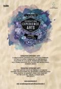 [Sensation Experience Arts]