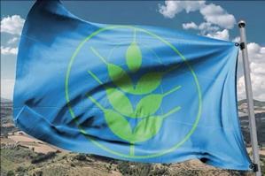 """[Quarta bandiera """"Spighe Verdi"""" consecutiva per il Comune di Caorle]"""