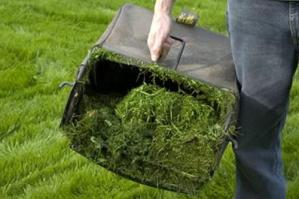 [Asvo, raccolta erba e ramaglie dal 11 al 16 maggio]