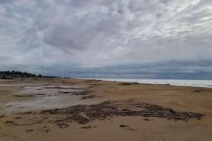 [Bibione, spiaggia ripulita: dalla Regione 1,2 milioni di euro per il ripascimento]