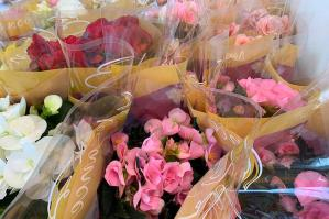 """[I negozi """"Il Tulipano"""" sostengo i pazienti del Burlo Garofalo e le loro famiglie]"""